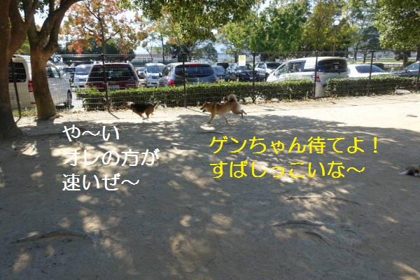 DSC02322もじ.jpg