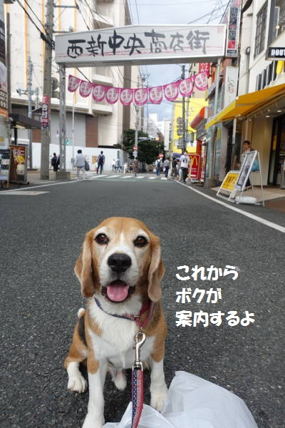DSC02930もじ.jpg