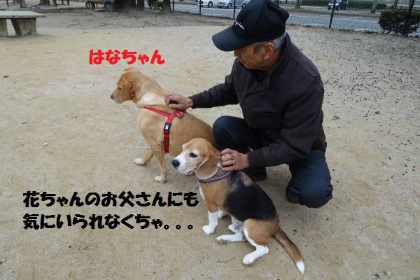 もじDSC02537.jpg
