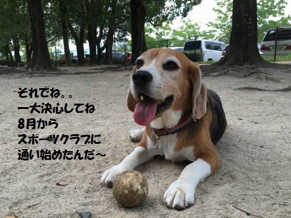 もじIMG_1677.jpg