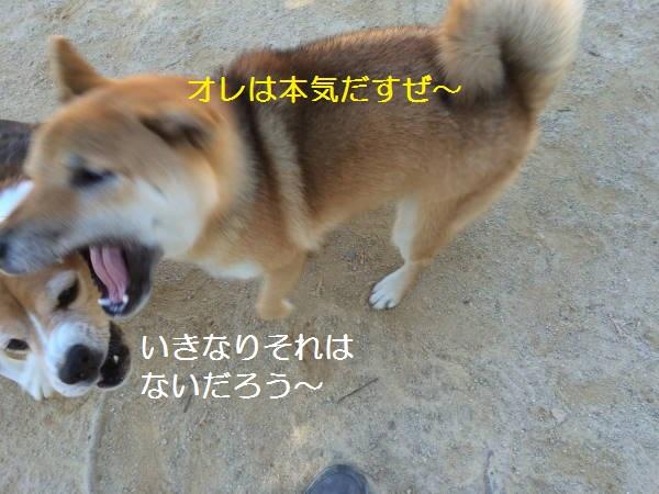 IMG_1161もじ.jpg