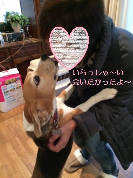 IMG_1379moji.jpg
